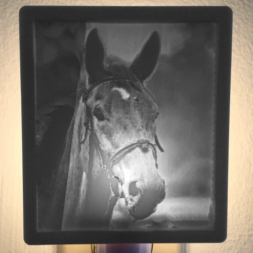 Horse_Nightlight_Product