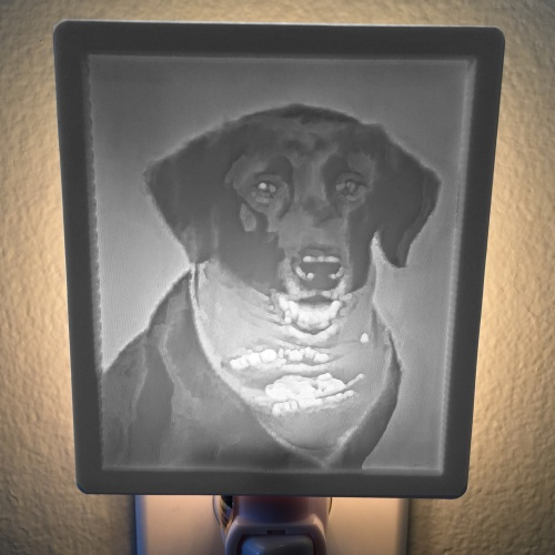 Service Dog Memorial lit