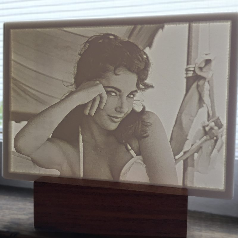 Elizabeth Taylor Window Evergraph