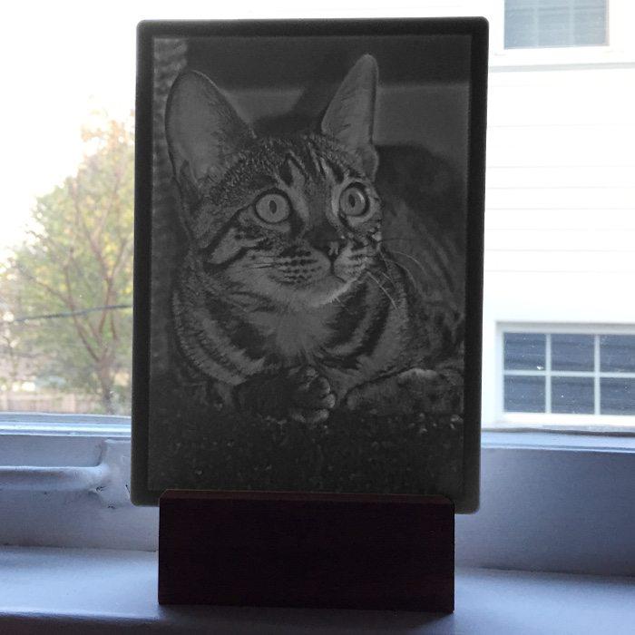 TigerCat_5x7 Window_Lit_Product